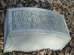 Harvey Norman Morey