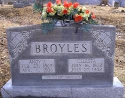 Andrew Jackson Andy Broyles
