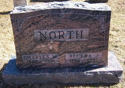 Alceba Jane <i>Webster</i> North