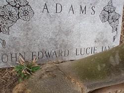 Lucie Jane Adams