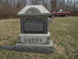 Dr A. P. Brown