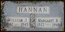 William James Hannan