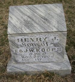Henry J Koops