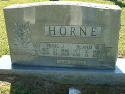Penie L. <i>Jones</i> Horne