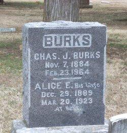 Alice E. <i>Stone</i> Burks