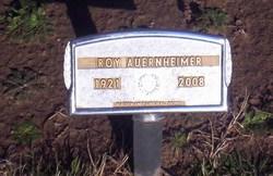 Roy Alfred Auernheimer