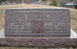 Eli Phipps
