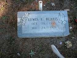 Lewis Earl Burris