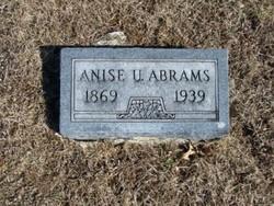 Anise Abrams