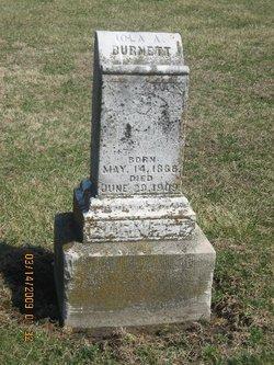 Iola A <i>Nichols</i> Burnett