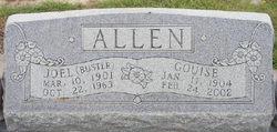 Joel Hayden Allen