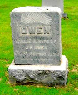 Sarah Ann Sallie <i>Butler</i> Owen