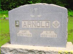 Louisa J Arnold