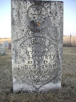 Sarah E. Galloway