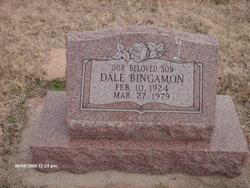 Dale Bingamon