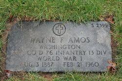 Wayne F Amos