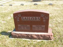 David Sailors
