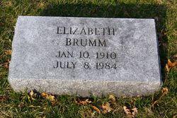 Elizabeth <i>Dinger</i> Brumm