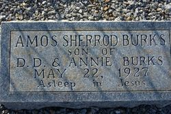 Amos Sherrod Burks
