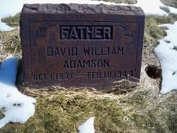 David William Adamson
