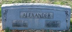 Alice E. <i>Foster</i> Alexander