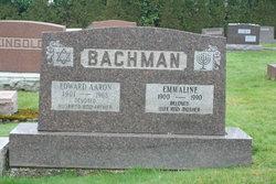 Edward Bachman