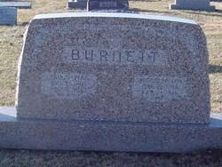 Arthur Penn Burnett