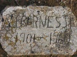 W. I. Barnes, Jr