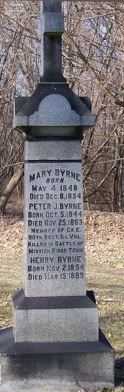 Peter J Byrne