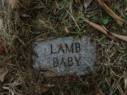Lather Lamb