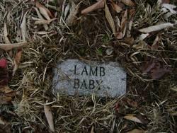 Otis Lamb