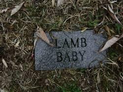 Johny Lamb