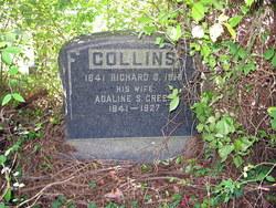 Richard Siner Collins