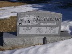 Eldro Normen Anderson