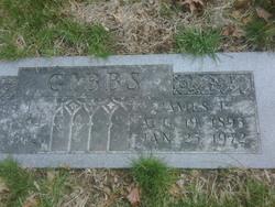 James T Gibbs