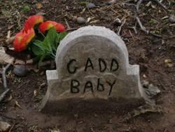 Baby Gadd