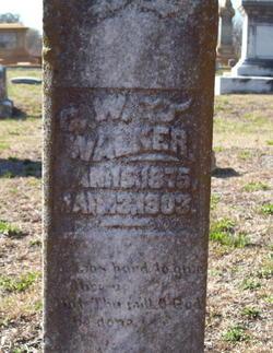 C W Walker