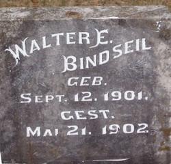 Walter E Bindseil