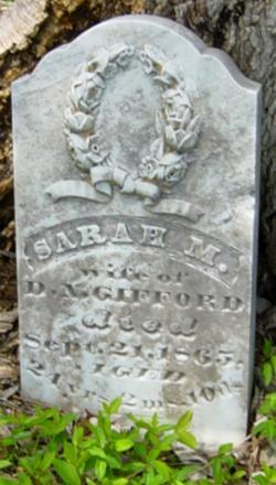 Sarah M Gifford