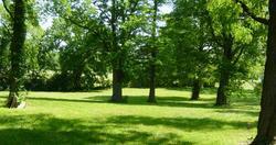 Alton Mental Health Center Cemetery