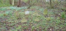 Blue Grass Memorial Cemetery