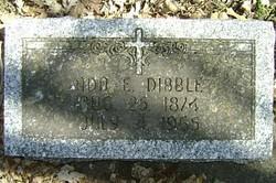 Ada Ellen Dibble