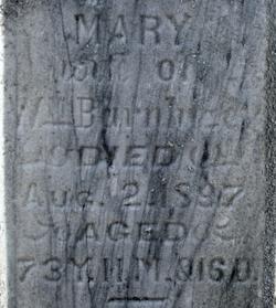 Mary Jane <i>Shetterly</i> Barnhizer