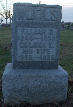 Elijah D Wools