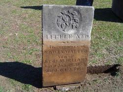 Edwin Walter Ned Holland