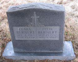 Felix Bernert