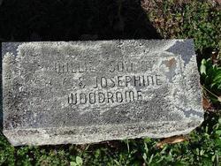 Willie Woodrome