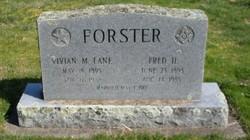 Vivian Maude <i>Lane</i> Forster