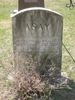Wayne Seymour Asay