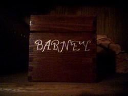 Barney Verndog Taylor